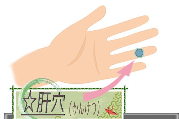 肝穴(かんけつ)の画像