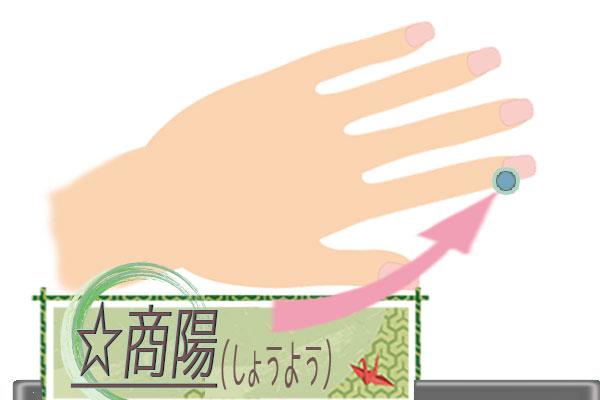 商陽(しょうよう)の画像