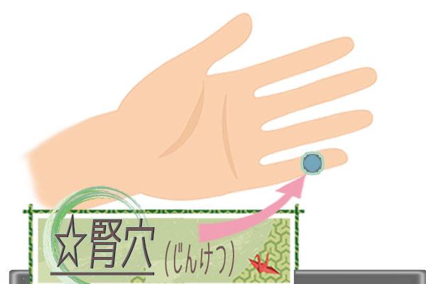 腎穴(じんけつ)の画像
