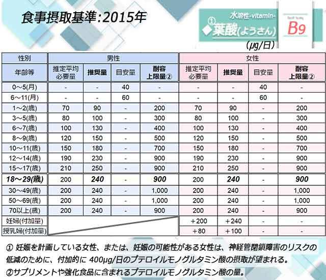 「葉酸」日本人の食事摂取基準◆画像